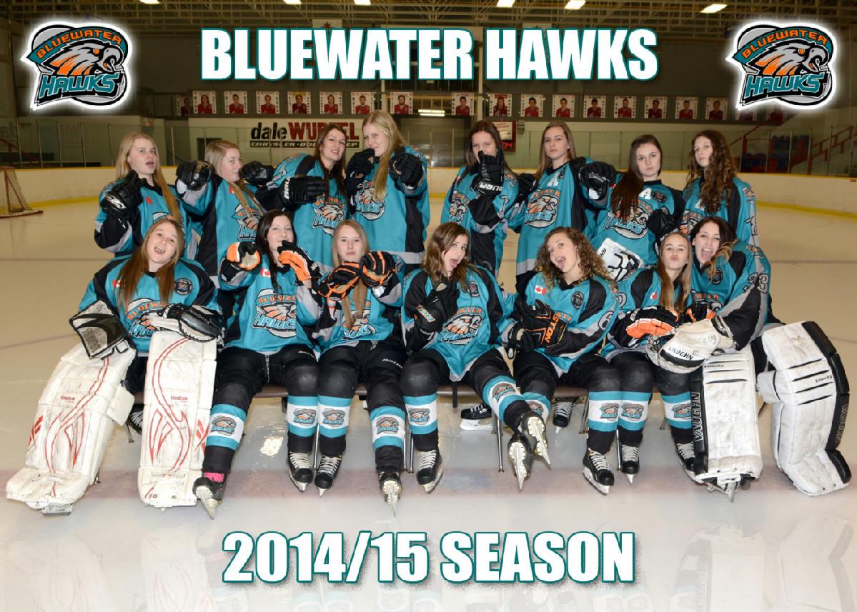 Hawks_2014.jpg